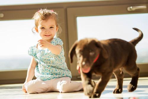 რომელ ცხოველთან კონტაქტია უსაფრთხო ალერგიული ბავშვისთვის?